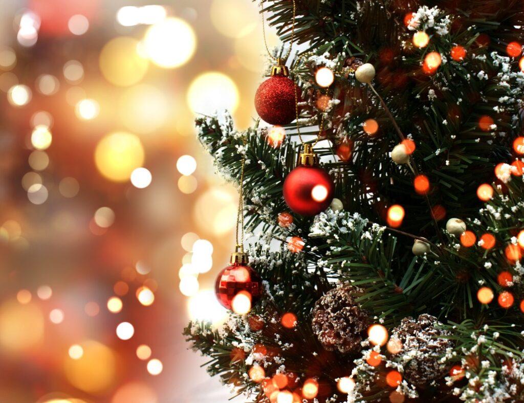 Kako izabrati pravo božićno drvce?